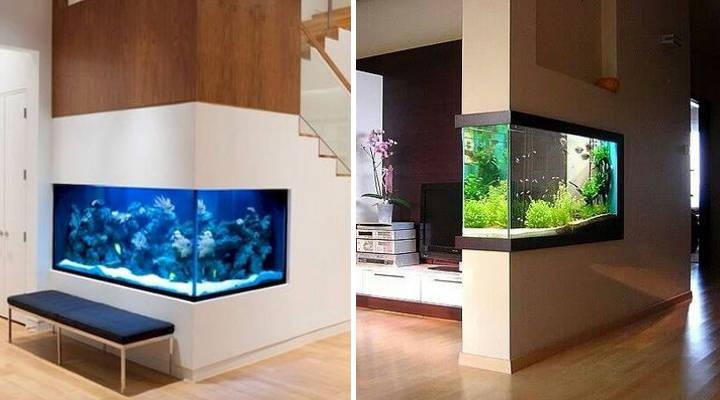 C mo decorar la casa con un acuario consejos e ideas de - Acuario en casa ...