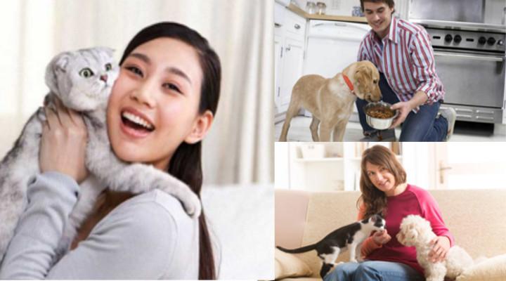 Cómo Ganar Dinero Cuidando Mascotas y Conseguir un 100% de Clientes