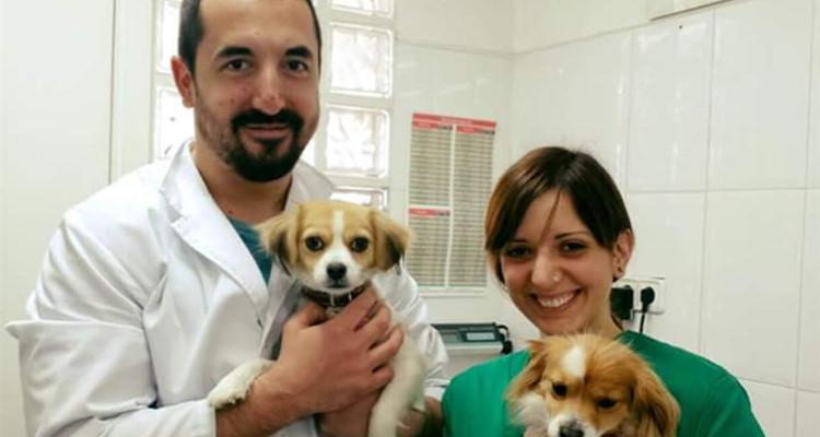 Profesionales Destacados Clinica Veterinaria 4 Vents