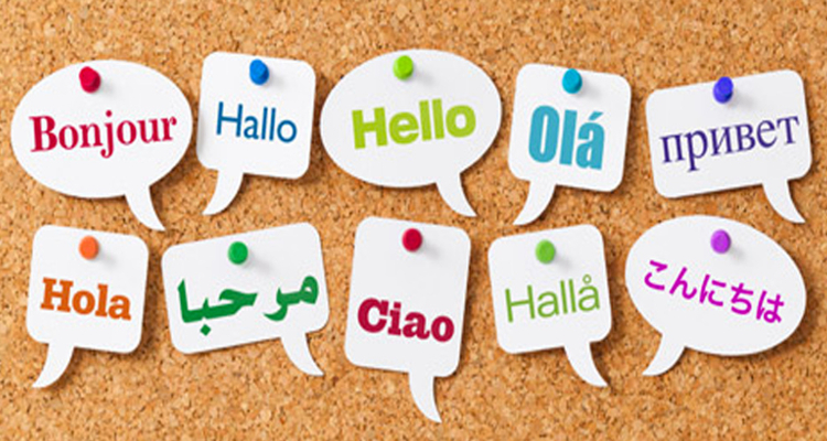 conseguir clientes para traducción