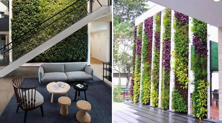 Cu nto cuesta instalar un jard n vertical precios - Jardin vertical interior ...