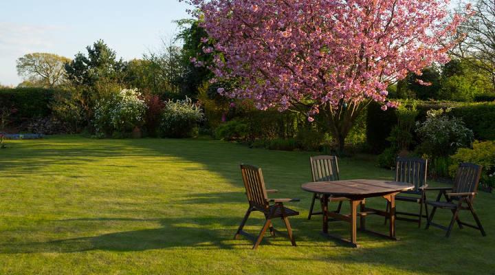 ¿Cuánto cuesta hacer un jardín? Tipos y precios actuales