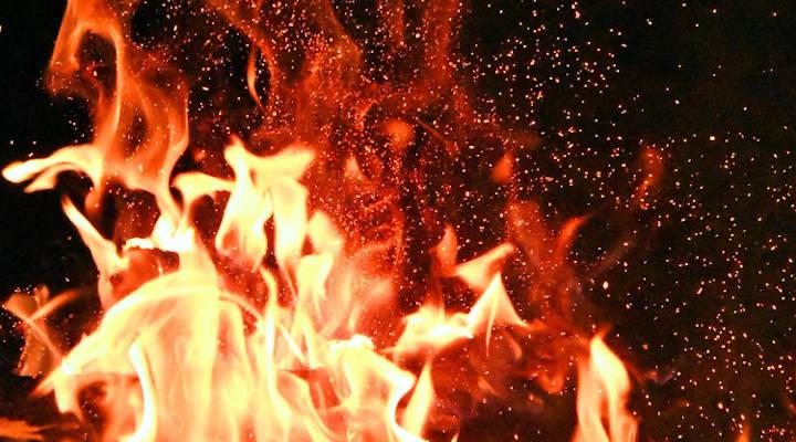 ¿Calderas de gasoil o calderas de biomasa? Estudio comparativo de ventajas y diferencias