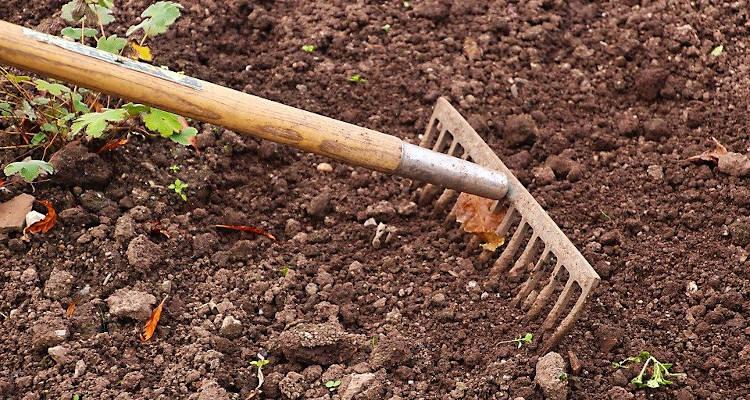 Cómo preparar el jardín para poner césped