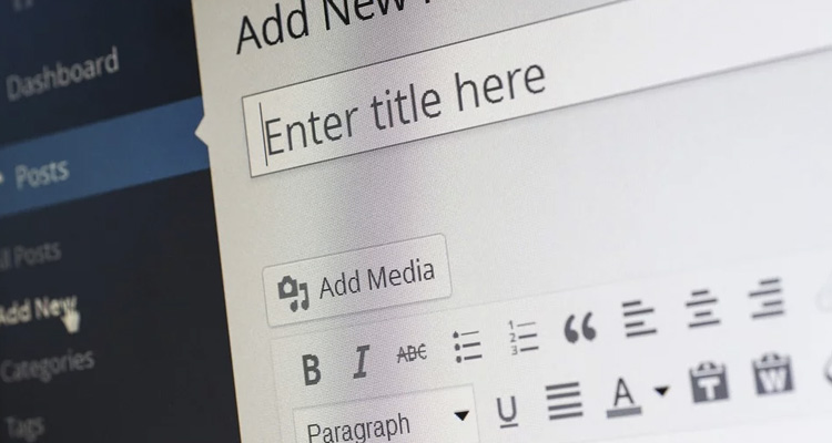 Precio redactor web