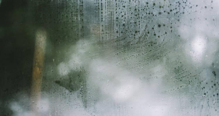 Cuánto cuesta arreglar humedades