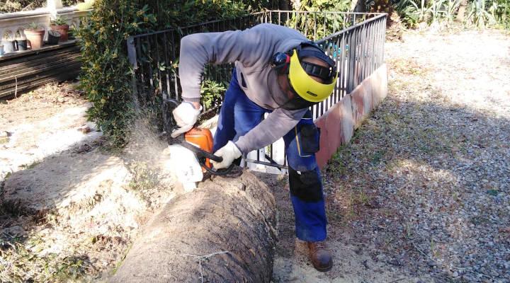 Profesionales Destacados Jardineros Cunit