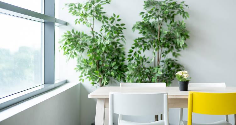 Cuánto cuesta el montaje de muebles de Ikea