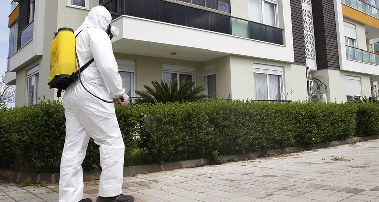 Cuánto cuesta la limpieza con ozono