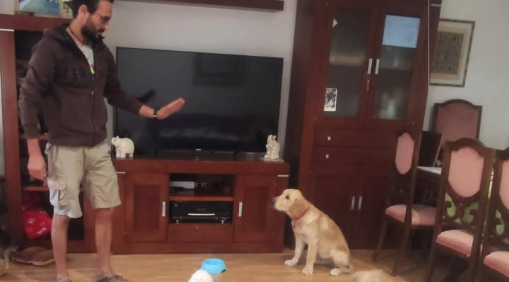 Profesionales Destacados de Cronoshare: Entrevista a Jorge Pereira de I Love Dog
