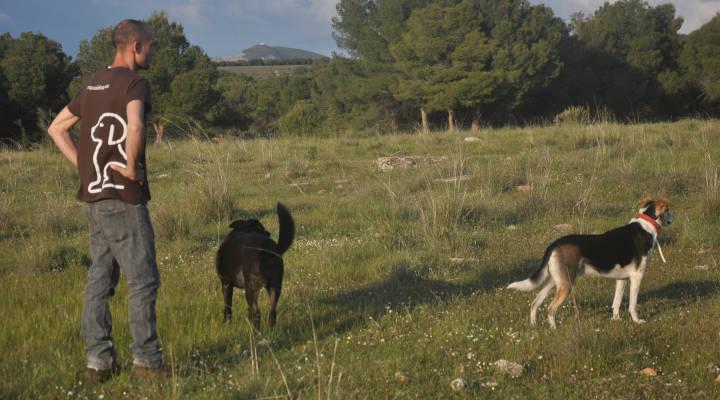 Profesionales Destacados de Cronoshare: Entrevista a Equaldog